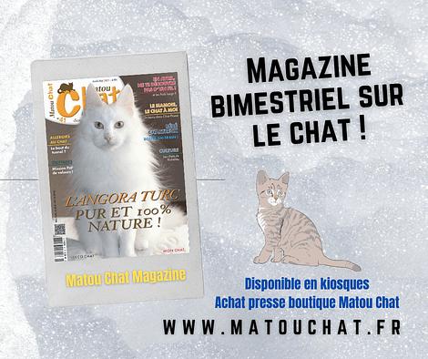 le magazine matou chat est un bimestriel sur le chat uniquement