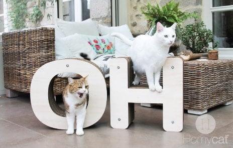 griffoir chat Homycat