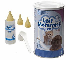 lait maternise TVM chaton et biberon